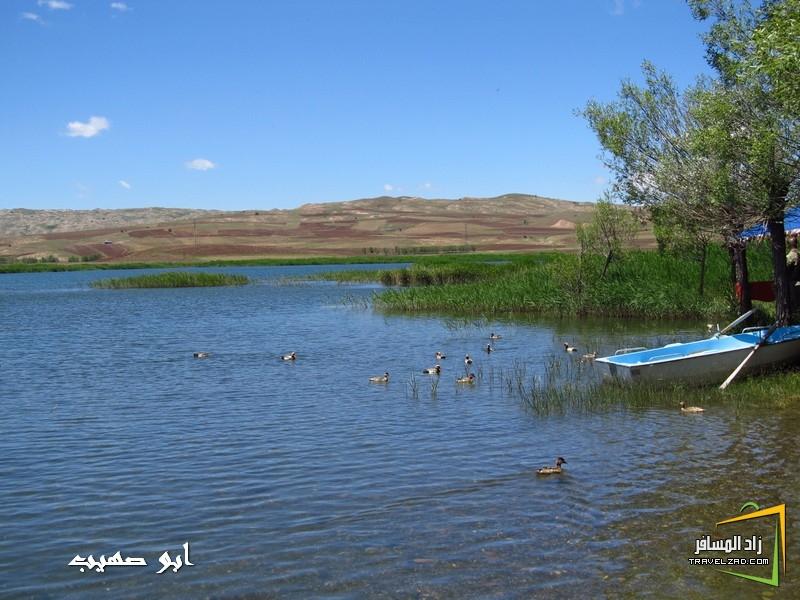 sivas -تركيا 96008.jpg